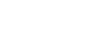 Brand Design Portfolio Flypress